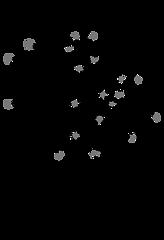 ciros logo.png