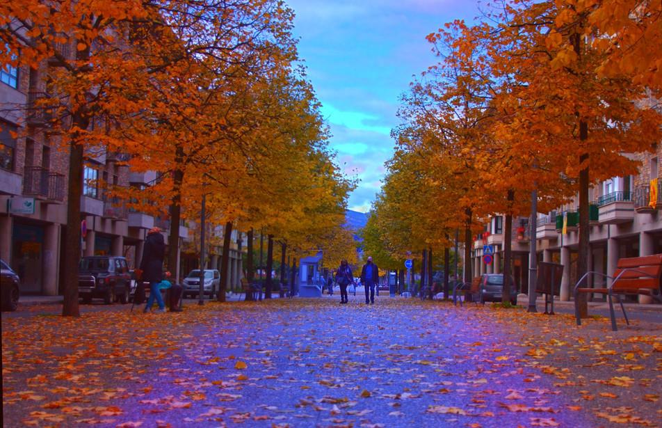 paseo_1_edited.jpg