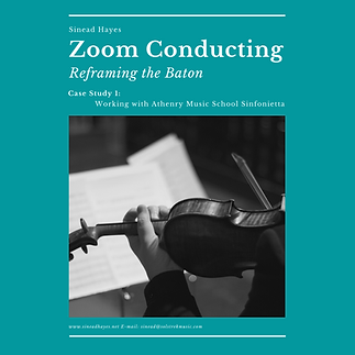 Copy of Zoom Conducting Case Study 1.png
