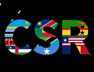 2022 CSR Initiative.png