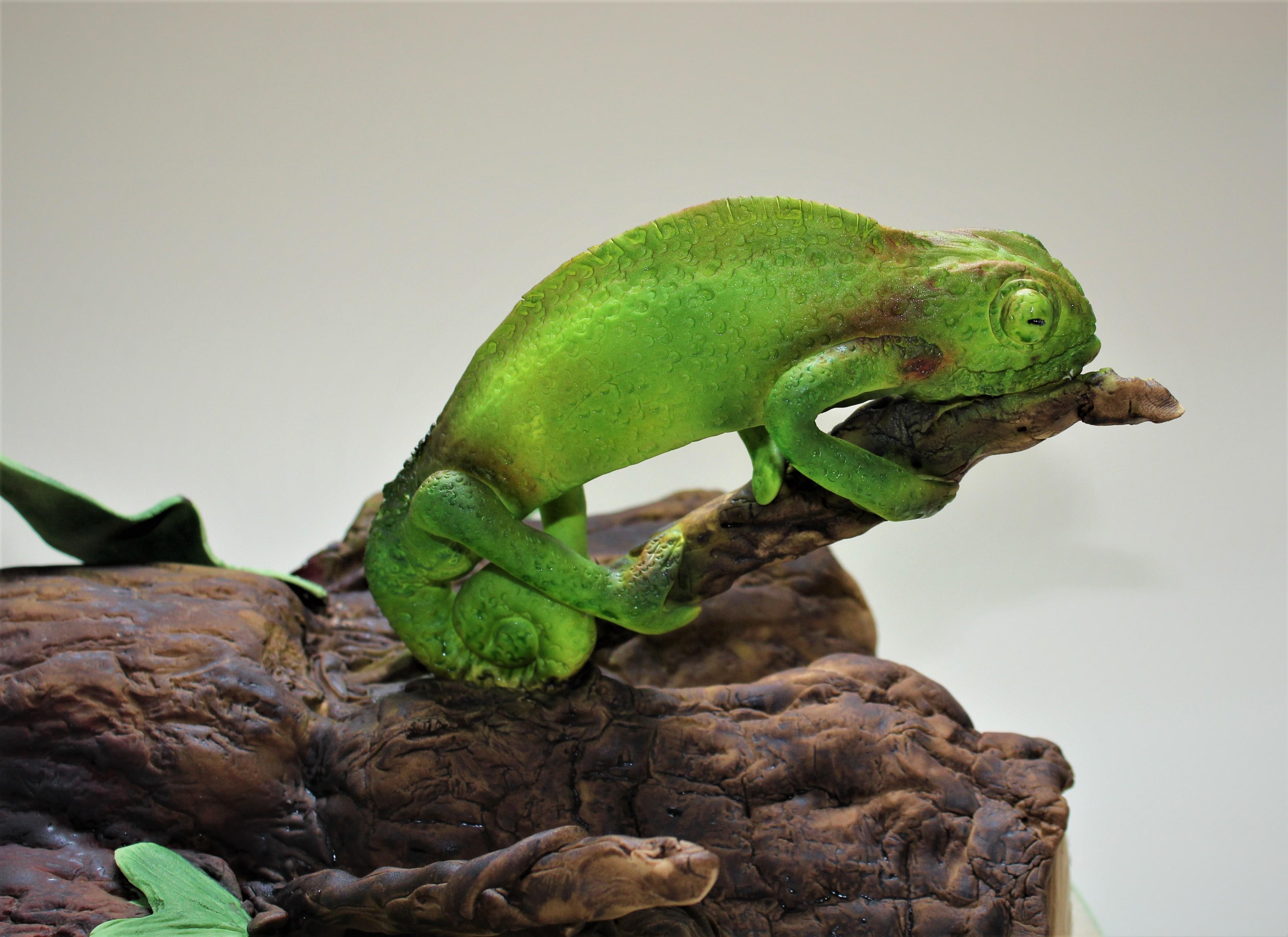 Chameleon birthay cake  (3)