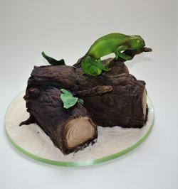 Chameleon birthay cake  (2)