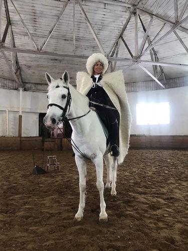 Щкола Верховой Езды на ЦМИ