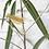 Thumbnail: Insecte en laiton