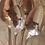 Thumbnail: CUILLERE ANCIENNE EN ARGENT GRAVEE