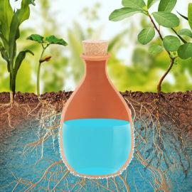 Pot d'irrigation en terre cuite Olla