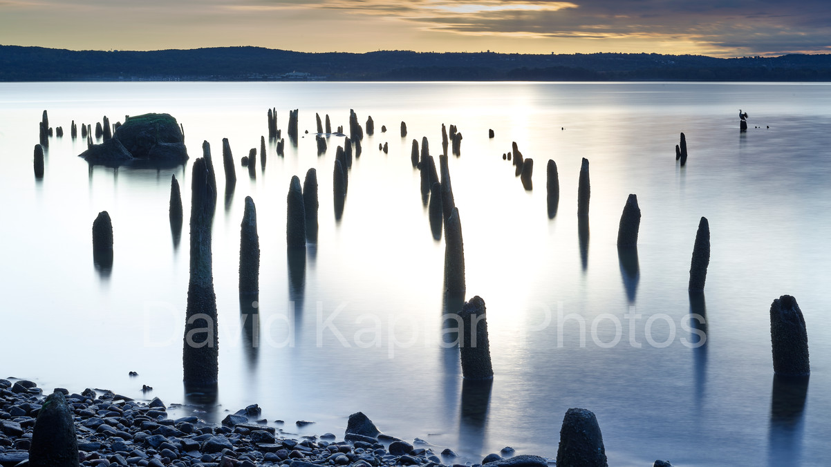Pilings on the Hudson