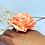 Thumbnail: PEACH ROSE