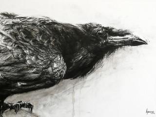 16-26 Mars 2017 - 2éme Prix de dessin Pierre David Weill