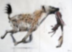 La Meute - Crocuta crocuta n°2 - Hyane