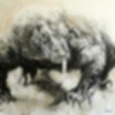 Dessin - Varan Komodo - Hyane