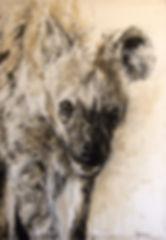 Charognards - Crocuta crocuta n°37 - Hyane
