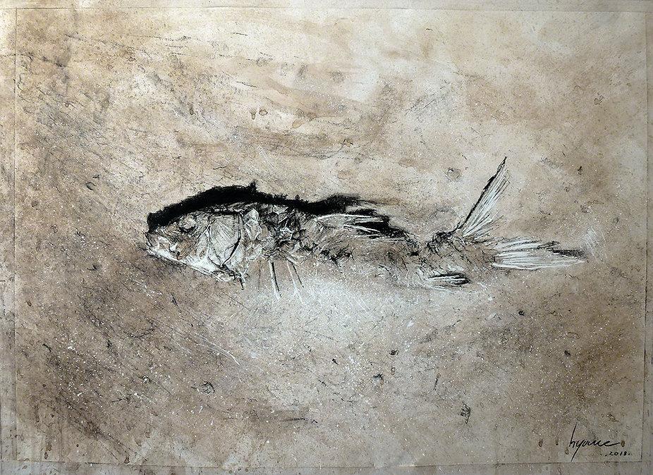 Dessin.Hyane. Dead fish