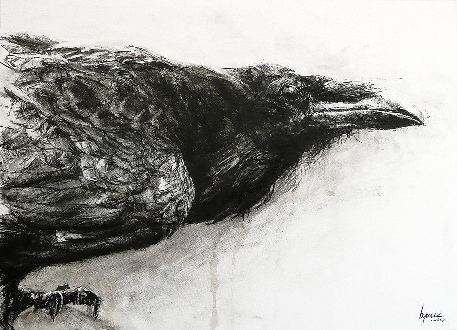 Dessin - Corbeau - Hyane