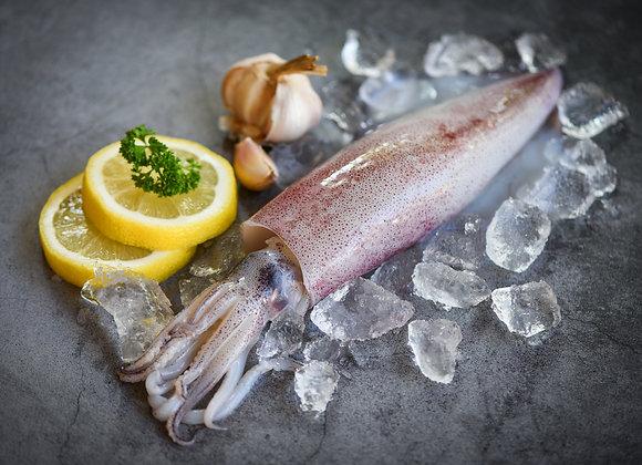 Local Squid