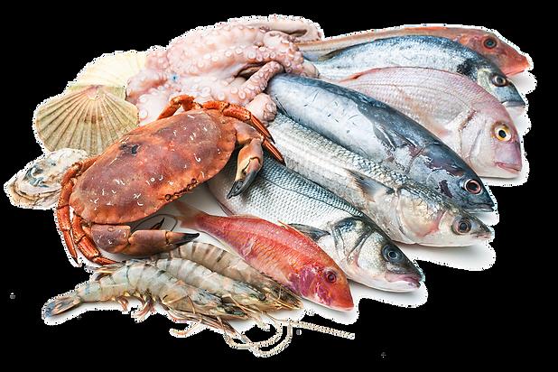 kisspng-seafood-fish-market-stock-photog