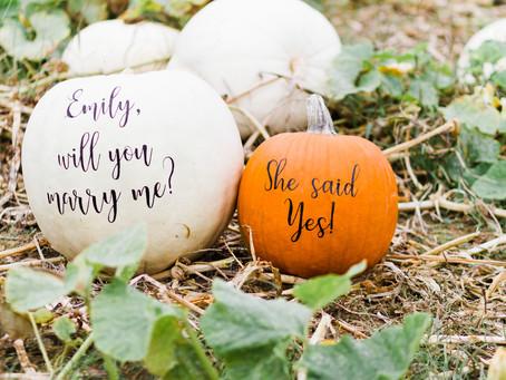 Five Fall Proposal Ideas