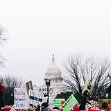 protesterer