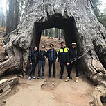 GIANT SEQUOIA HIKE ADD-ON