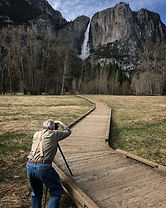 Private, guided sightseeing tour of Yosemite Valley and Glacier Point in Yosemite National Park. Available for visitors of all ages, abilities and interests.
