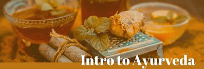 WORKSHOP - INTRO TO AYURVEDA with Dr. Dinesh Gyawali