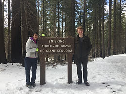 Private, guided snowshoeing adventure into the Tuolumne Grove of Giant Sequoias in Yosemite National Park. Available for visitors ages 7 and up.