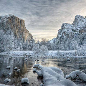 Press Release: Yosemite authorizes first worker cooperative to lead guided trips in National Park