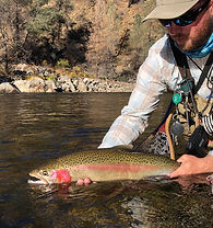 Private, guided, catch & release, full day fly fishing adventure for rainbow, brown, and brook trout in the Tuolumne and Merced River watersheds of Yosemite National Park. Available all anglers 9 years old and up.