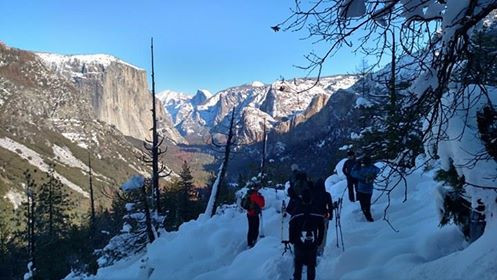 Snowshoeing In Yosemite National Park
