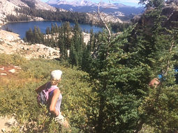 Private day hike passed May Lake and up to the Mt Hoffmann summit from Tioga Road in Yosemite National Park's high country. Available to visitors ages 9 and up.