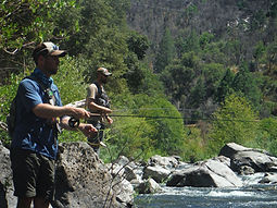 Private, guided, catch & release, half day fly fishing adventure for rainbow, brown, and brook trout in the Tuolumne and Merced River watersheds of Yosemite National Park.. Available to intermediate and experienced anglers 9 years old and up.