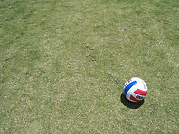 netball-1491741-1280x960.jpg