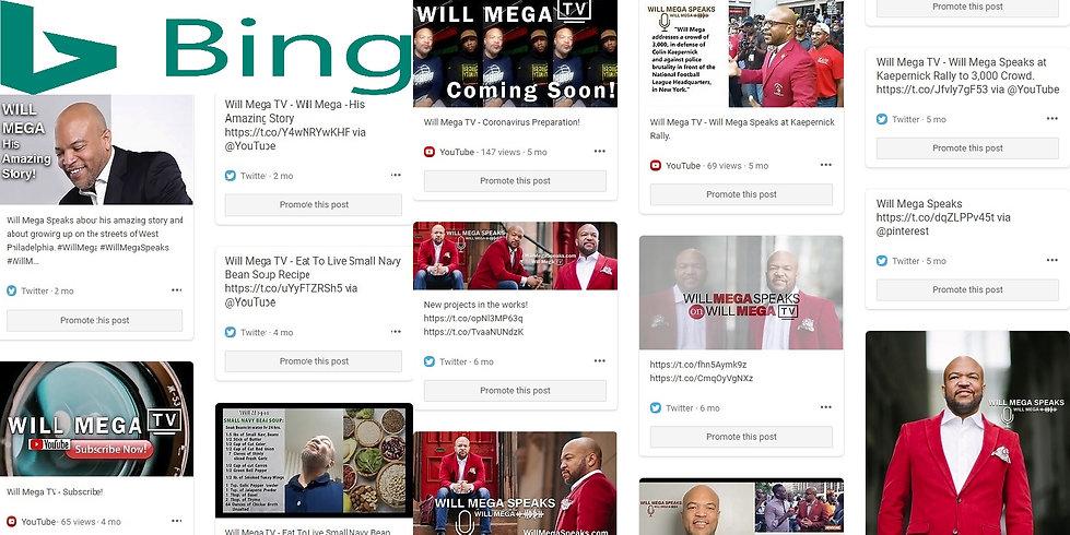 Will Mega Bing Page.jpg