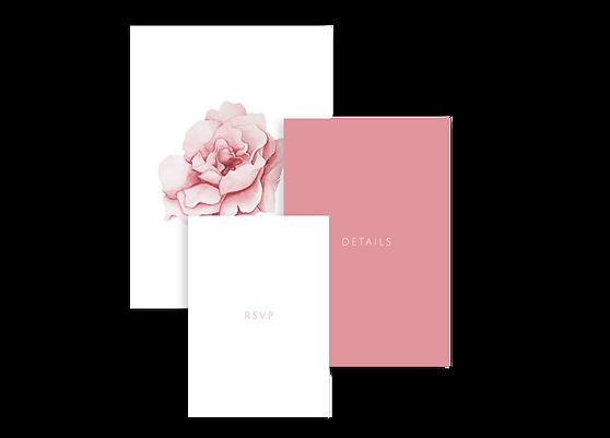 Rose_Website.png