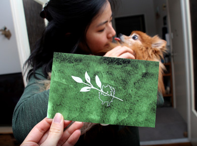 Bride, her dog, and Extra Information card