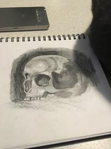 Skull, 2016