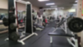 Health Club, Gym, Fitness Center, Free Weights, Weight Lifting, Bodybuilding, Personal Trainer, Tryon NC, Columbus NC, Landrum SC