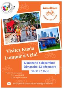 Visite de Kuala Lumpur à .....vélo!