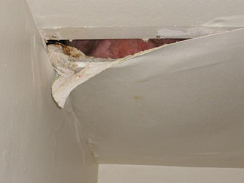 Roof Leak Repair Service Brisbane