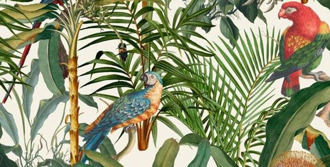 Chirpy Parrots