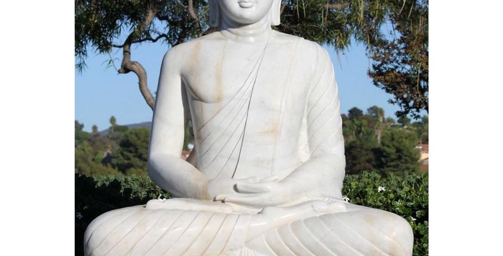 Thrangu Tashi