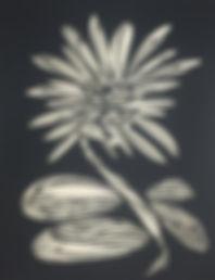 papercutting.dragonflylotusflower.2017.n