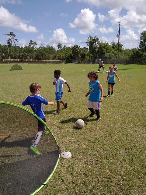 Goat Soccer Training Kids Soccer