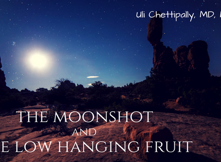 The Moonshot and The Low Hanging Fruit - Path to Innovation in Healthcare