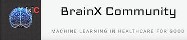 BrainX.png