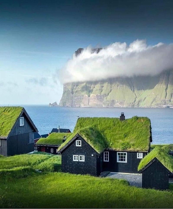 Iceland Lawn.jpeg