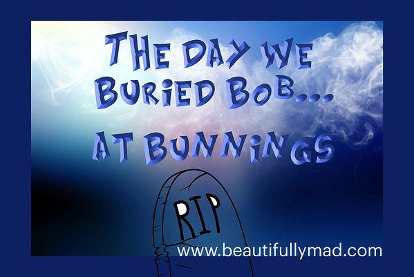Buried Bob at Bunnings-small 2.jpg