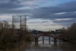 dal ponte
