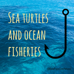 Sea turtles and ocean fisheries