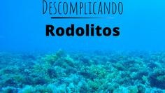 Rodolitos: 'Like a rolling stone'
